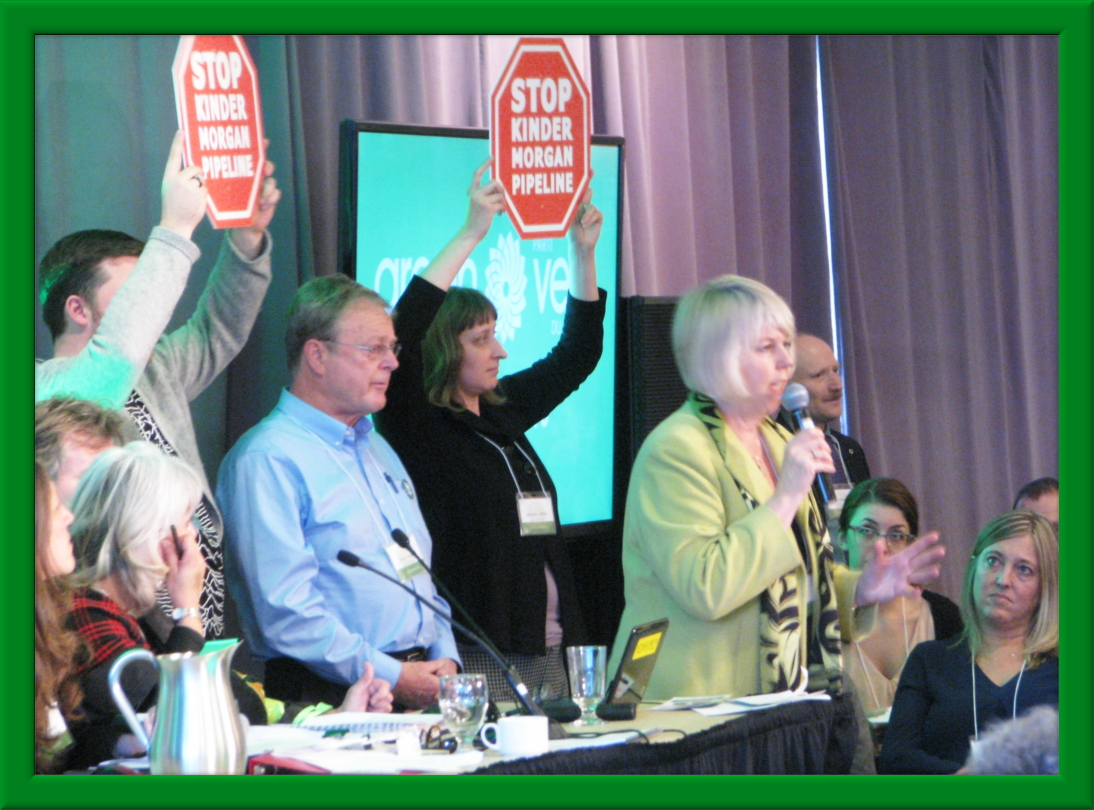 Former GPC Deputy Leader and current Vancouver Councillor, Adriane Carr spoke about Kinder Morgan at the SGM plenary